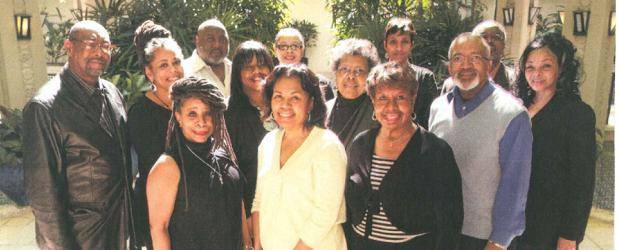 2011 IDVAAC Steering Committee